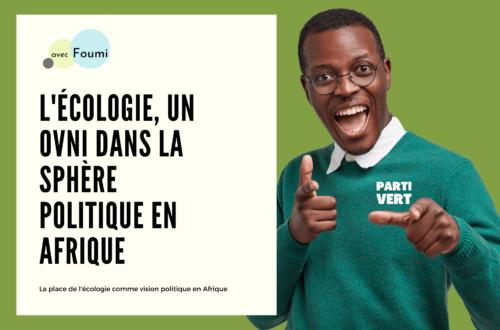 Article : L'écologie, un ovni dans la sphère politique en Afrique