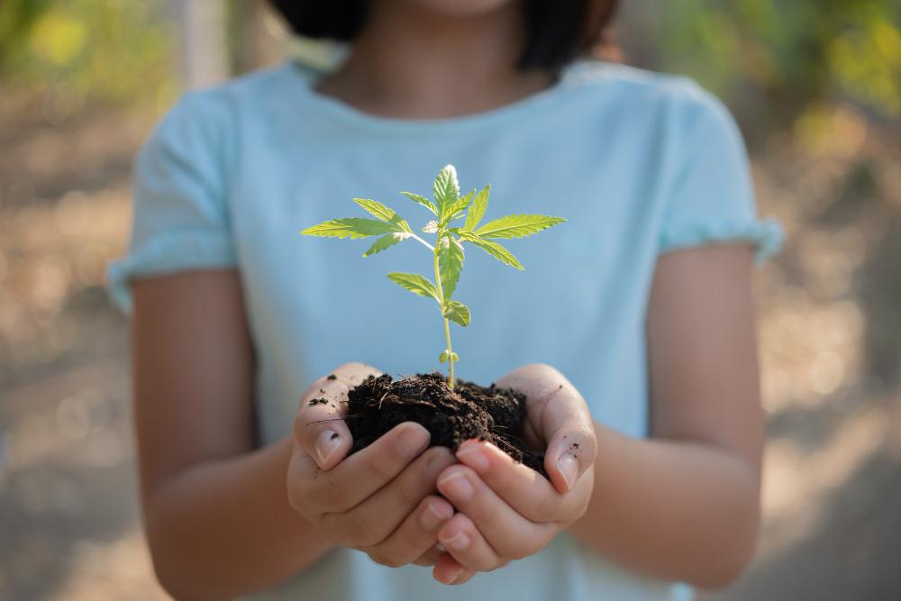 jeune fille avec un plant d'arbre